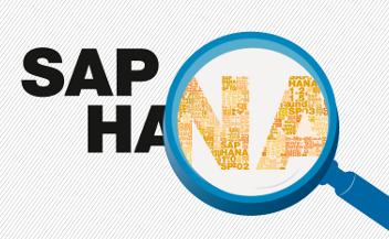 Szkolenia SAP HANA seargin miniatura